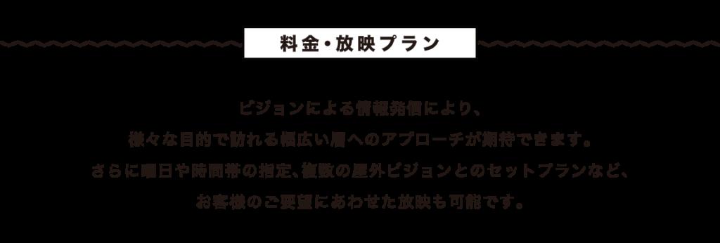 ビジョンによる情報発信により、様々な目的で新宿を訪れる幅広い層へのアプローチが期待できます。さらに曜日や時間帯の指定、複数の屋外ビジョンとのセットプランなど、お客様のご要望に合わせた放映も可能です。